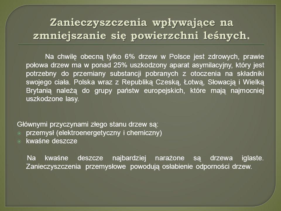 Na chwilę obecną tylko 6% drzew w Polsce jest zdrowych, prawie połowa drzew ma w ponad 25% uszkodzony aparat asymilacyjny, który jest potrzebny do prz