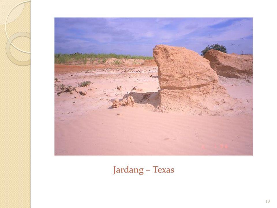 Jardangi Grzbiety wydłużone zgodnie z kierunkiem wiatru. Ich długość może dochodzić do kilku kilometrów. Ściany jardangów są strome, podcięte u podsta