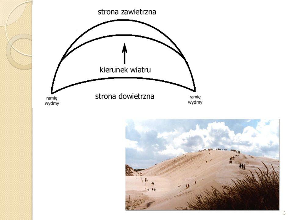 WYDMY Paraboliczne - charakteryzuje się tym, że ma kształt łuku o ramionach skierowanych pod wiatr. Mniej ubita miękka część znajduje się na kierunku