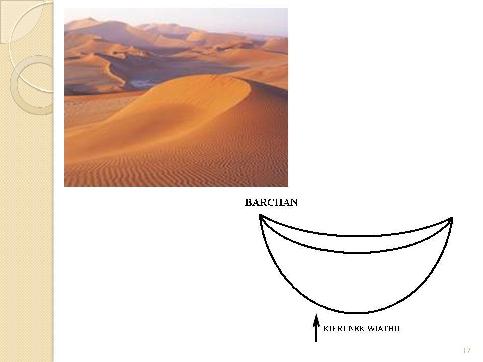 WYDMY Barchany – kształtem przypominają sierp. Powstają na obszarach pustynnych pozbawionych roślinności, gdzie wiatr wieje z jednego kierunku i ma um