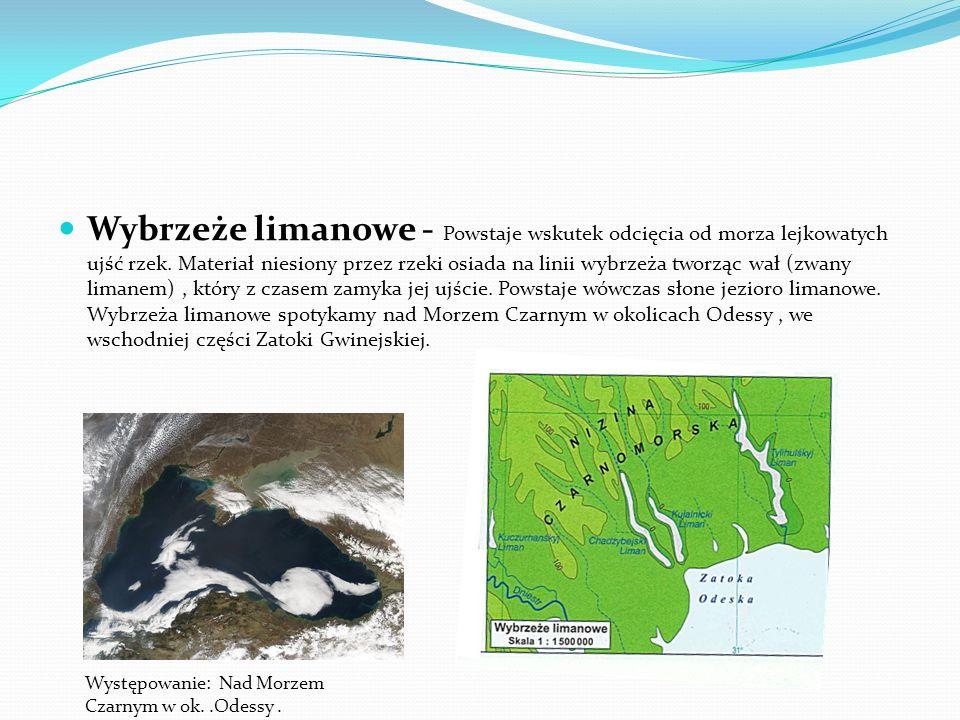 Wybrzeże mierzejowo - zalewowe – Powstaje wskutek usypywania przez płynące w jednym kierunku prądy morskie półwyspów, które odcinają od morza zatoki l