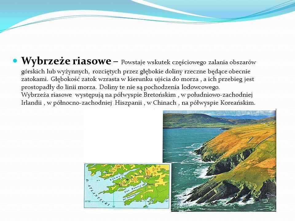 Wybrzeże szkierowe – Powstaje na częściowo zalanych obszarach wygładzonych przez lodowiec. Utworzone w ten sposób pagórkowate powierzchnie skalisto-il