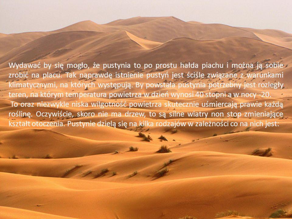Tego typu pustynie robią furorę w reklamach biur podróży, więc każdy rozpoznaje je bez problemu.