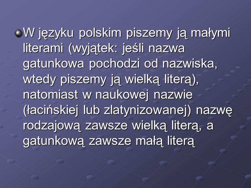 W języku polskim piszemy ją małymi literami (wyjątek: jeśli nazwa gatunkowa pochodzi od nazwiska, wtedy piszemy ją wielką literą), natomiast w naukowe