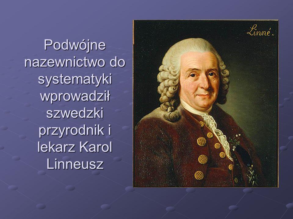 Podwójne nazewnictwo do systematyki wprowadził szwedzki przyrodnik i lekarz Karol Linneusz