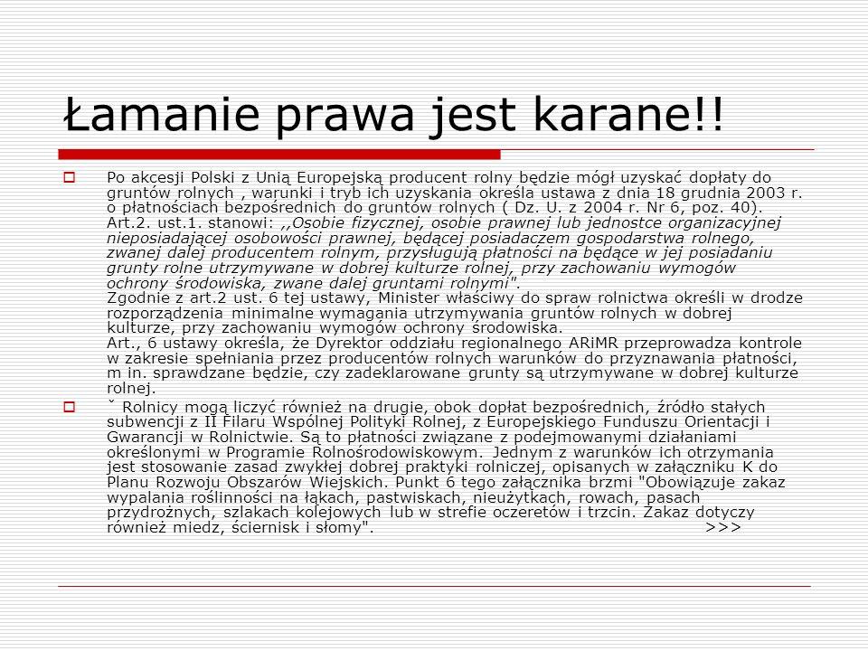 Łamanie prawa jest karane!! Po akcesji Polski z Unią Europejską producent rolny będzie mógł uzyskać dopłaty do gruntów rolnych, warunki i tryb ich uzy
