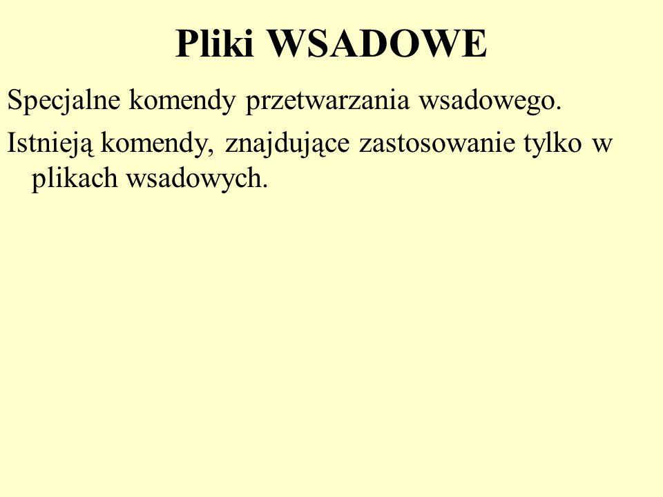 Pliki WSADOWE Specjalne komendy przetwarzania wsadowego. Istnieją komendy, znajdujące zastosowanie tylko w plikach wsadowych.