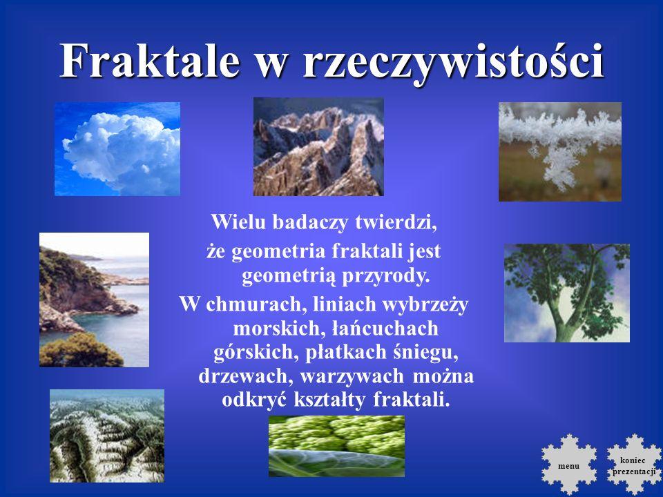 menu Fraktale w rzeczywistości Wielu badaczy twierdzi, że geometria fraktali jest geometrią przyrody.