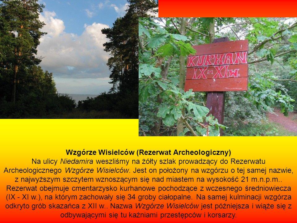 Wzgórze Wisielców (Rezerwat Archeologiczny) Na ulicy Niedamira weszliśmy na żółty szlak prowadzący do Rezerwatu Archeologicznego Wzgórze Wisielców. Je