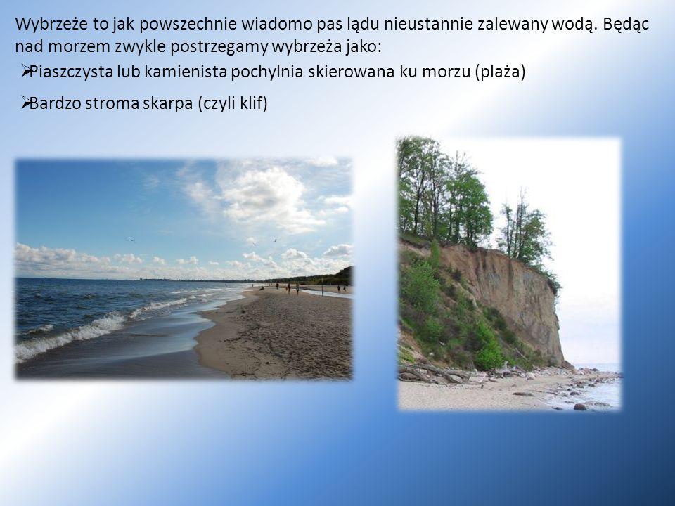 Wybrzeże to jak powszechnie wiadomo pas lądu nieustannie zalewany wodą. Będąc nad morzem zwykle postrzegamy wybrzeża jako: Bardzo stroma skarpa (czyli