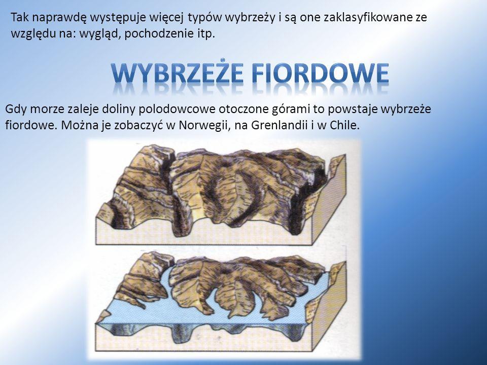 Tak naprawdę występuje więcej typów wybrzeży i są one zaklasyfikowane ze względu na: wygląd, pochodzenie itp. Gdy morze zaleje doliny polodowcowe otoc