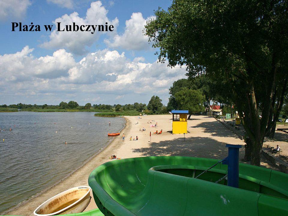 Plaża w Lubczynie
