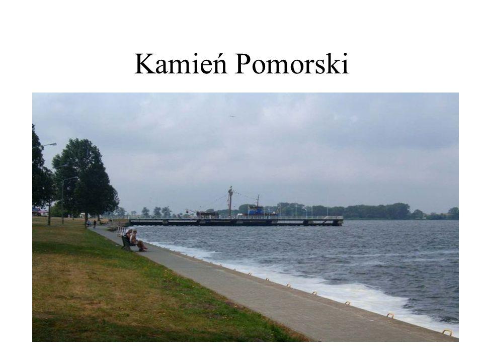 W porcie Kamień Pomorski dobrze rozwiniętymi funkcjami jest rybołówstwo indywidualne, żeglarstwo i od kilku lat turystyka pasażerska.