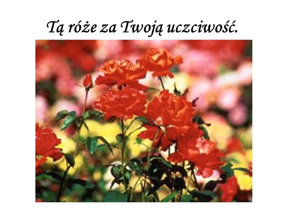 Tą róże za Twoją uczciwość.