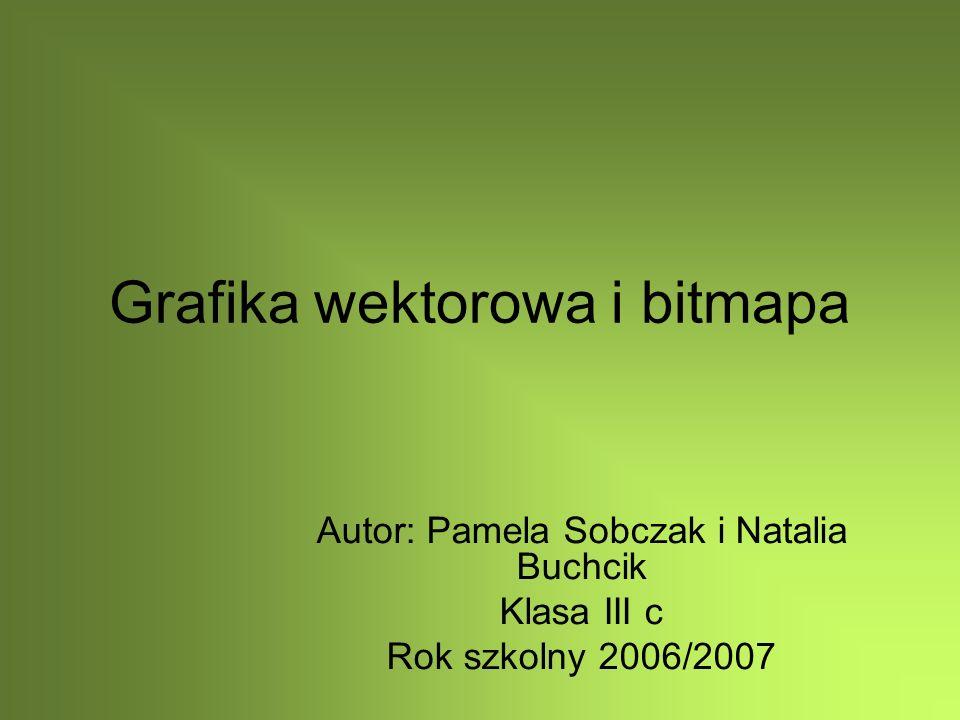 Grafika wektorowa i bitmapa Autor: Pamela Sobczak i Natalia Buchcik Klasa III c Rok szkolny 2006/2007