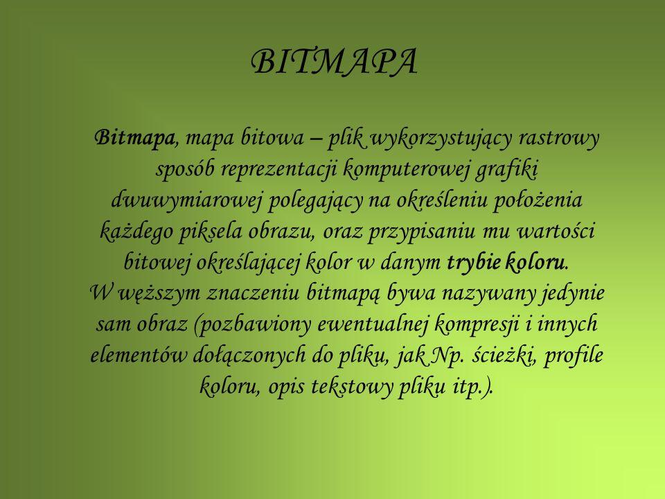 Bitmapa, mapa bitowa – plik wykorzystujący rastrowy sposób reprezentacji komputerowej grafiki dwuwymiarowej polegający na określeniu położenia każdego