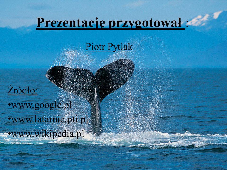 Prezentację przygotował : Piotr Pytlak Źródło: www.google.pl www.latarnie.pti.pl www.wikipedia.pl
