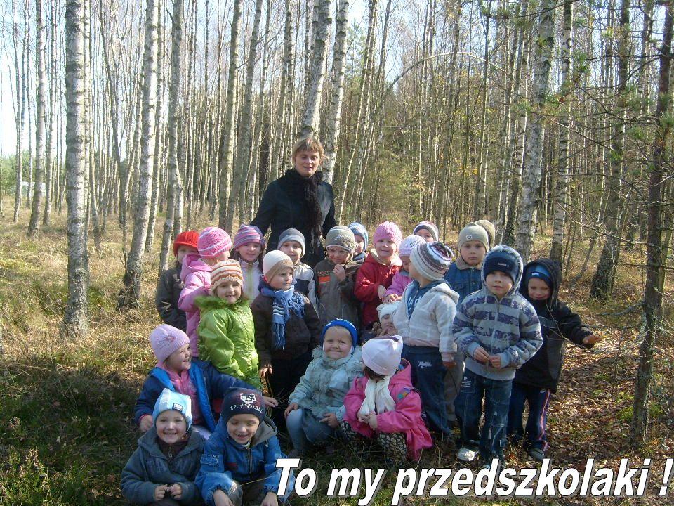 Wychowawcy w przedszkolu