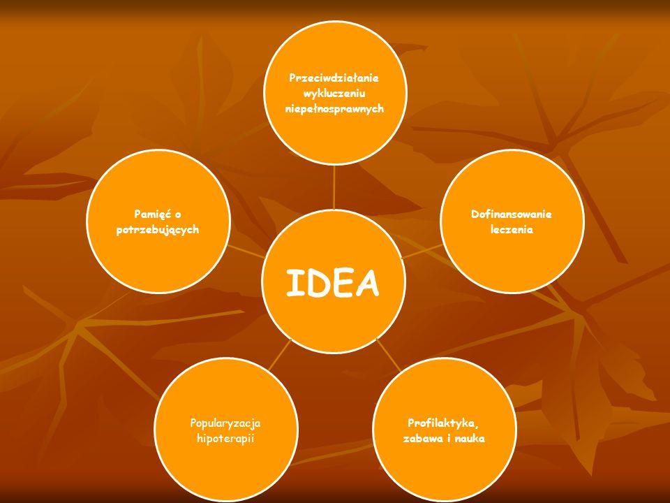 IDEA Przeciwdziałanie wykluczeniu niepełnosprawnych Dofinansowanie leczenia Profilaktyka, zabawa i nauka Popularyzacja hipoterapii Pamięć o potrzebują