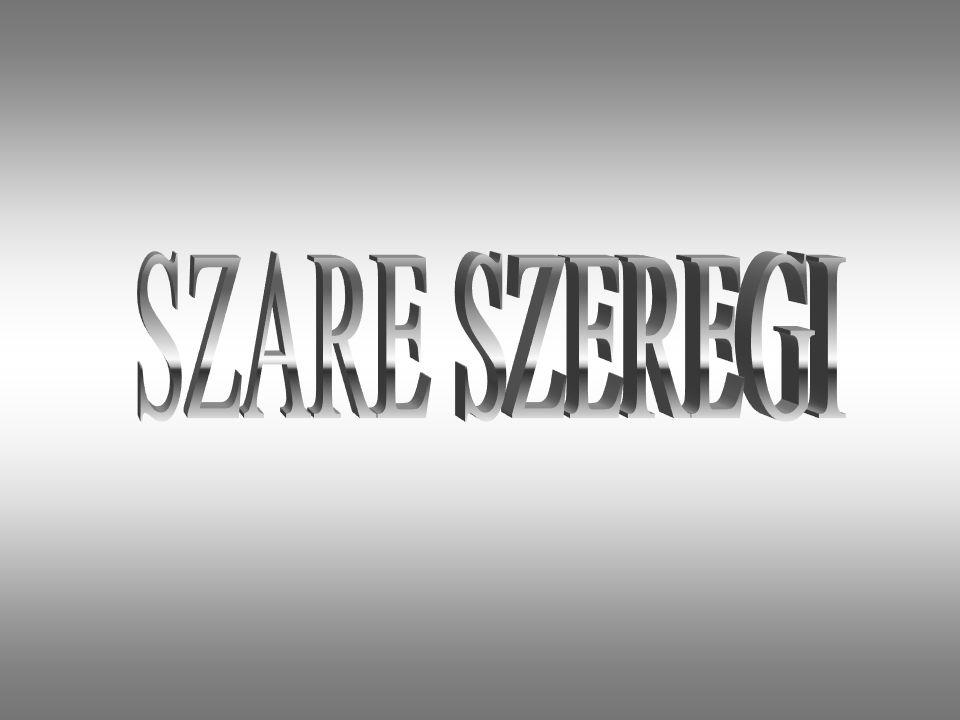 Historia Szarych Szeregów Szare Szeregi zostały utworzone na zjeździe Naczelnej Rady Harcerskiej w dniu 27 września 1939 roku.