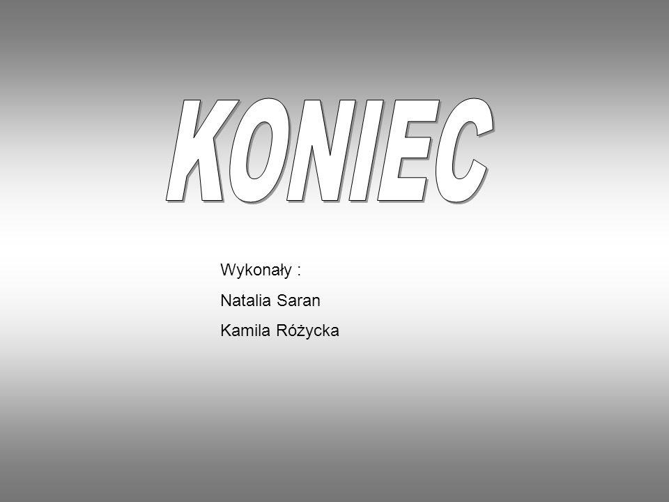 Wykonały : Natalia Saran Kamila Różycka