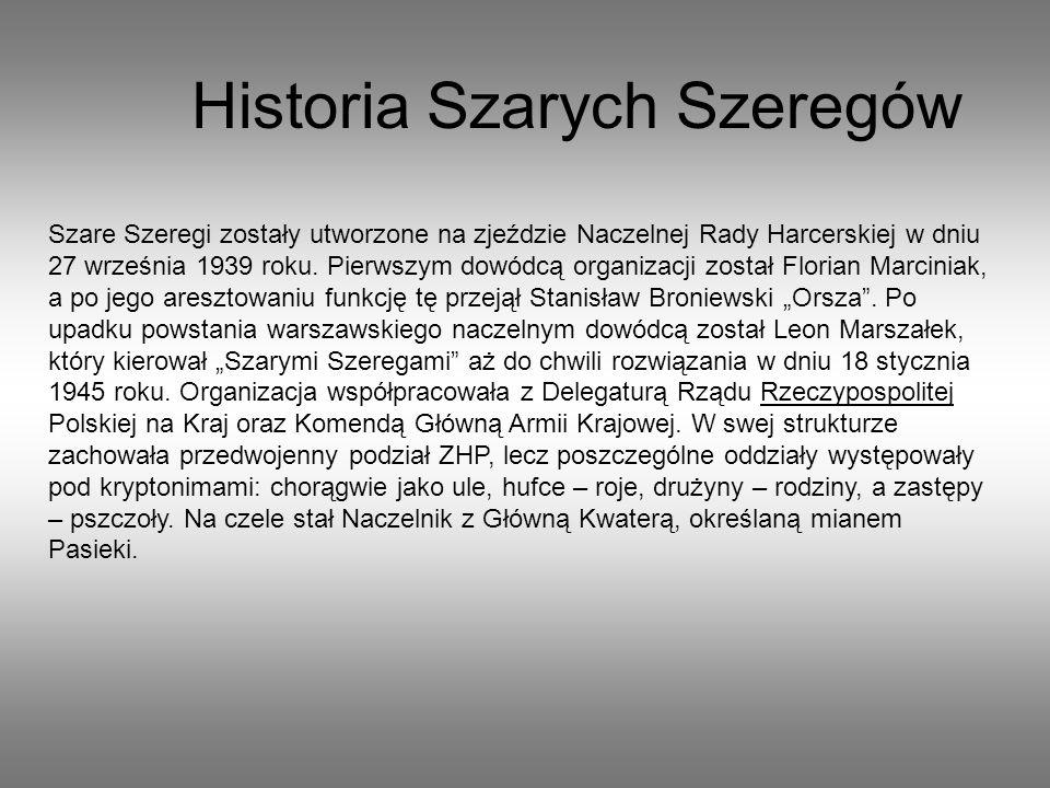 Początkowo do Szarych Szeregów mogła należeć młodzież powyżej siedemnastego roku życia.