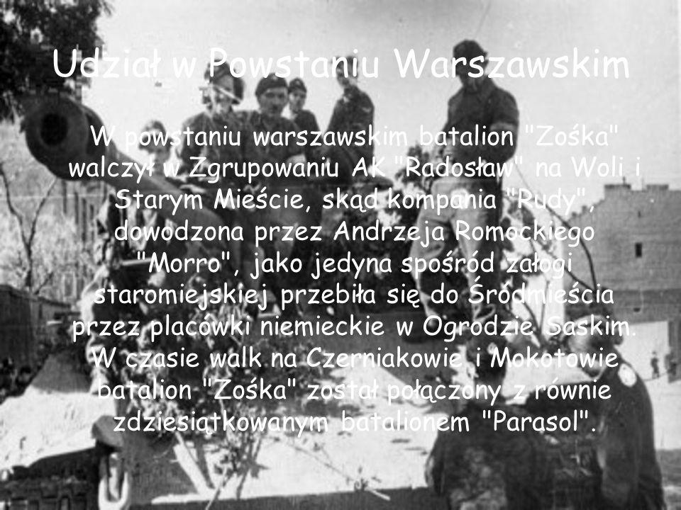 Udział w Powstaniu Warszawskim W powstaniu warszawskim batalion Zośka walczył w Zgrupowaniu AK Radosław na Woli i Starym Mieście, skąd kompania Rudy , dowodzona przez Andrzeja Romockiego Morro , jako jedyna spośród załogi staromiejskiej przebiła się do Śródmieścia przez placówki niemieckie w Ogrodzie Saskim.