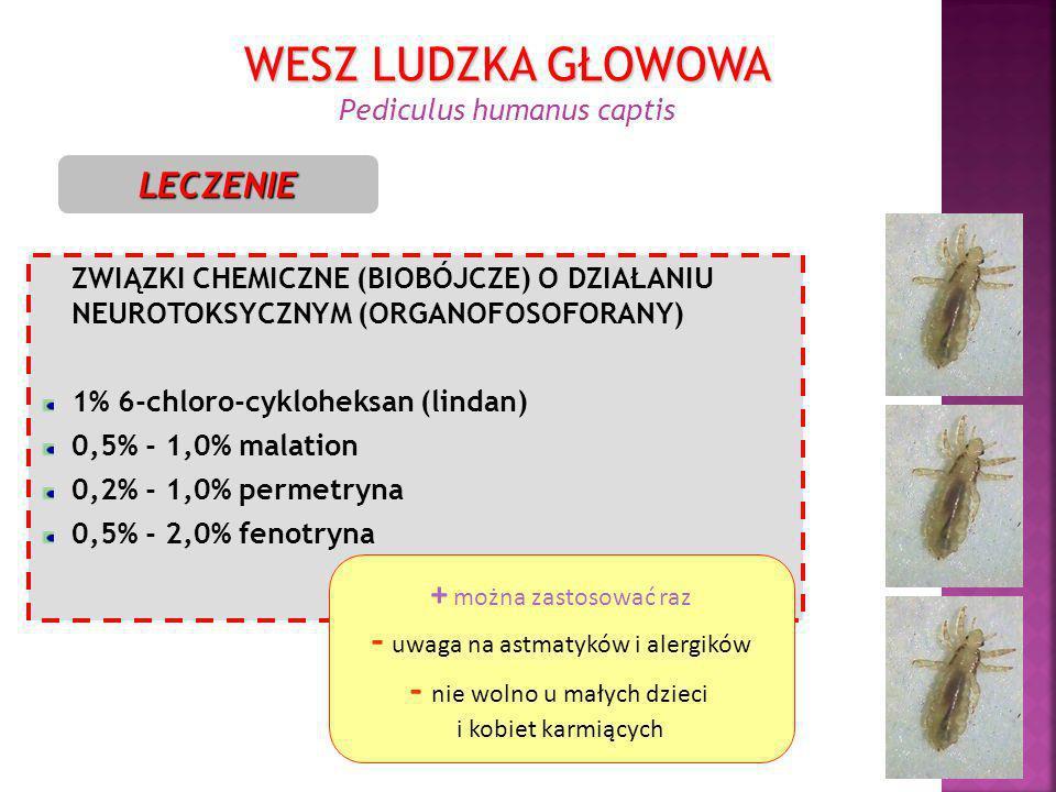 ZWIĄZKI CHEMICZNE (BIOBÓJCZE) O DZIAŁANIU NEUROTOKSYCZNYM (ORGANOFOSOFORANY) 1% 6-chloro-cykloheksan (lindan) 0,5% - 1,0% malation 0,2% - 1,0% permetr