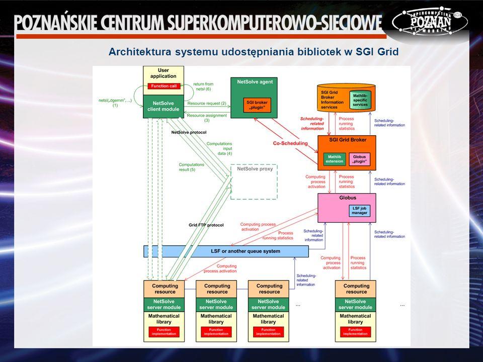 Architektura systemu udostępniania bibliotek w SGI Grid