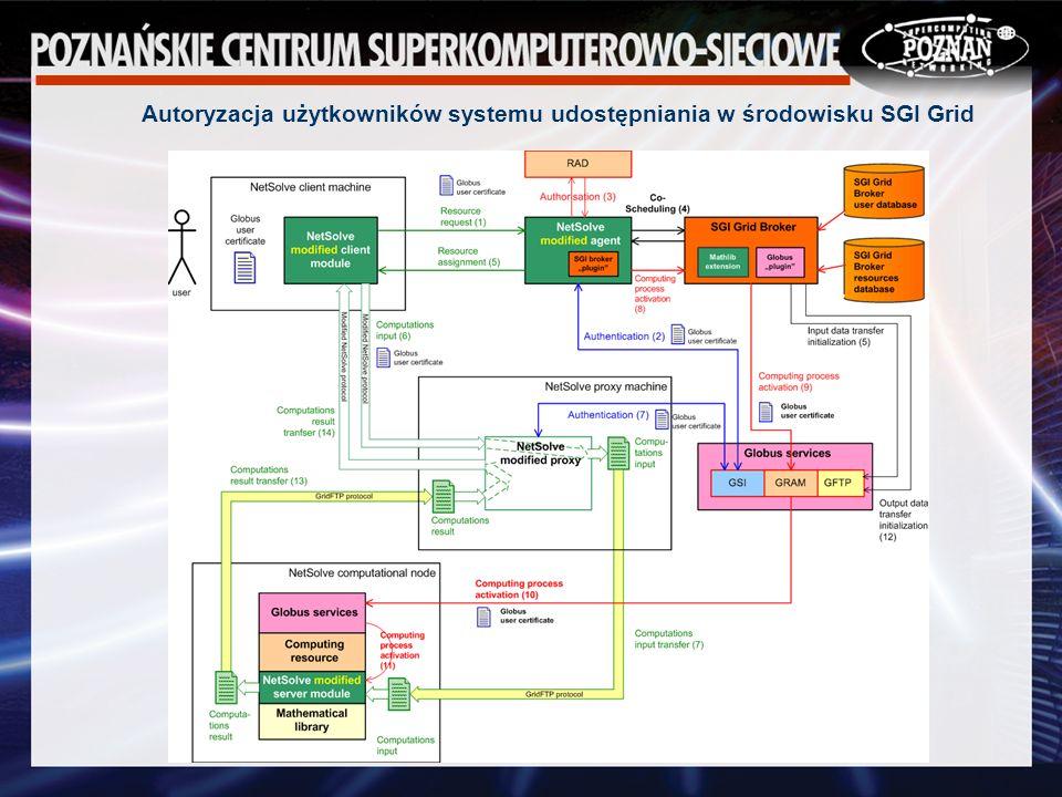 Autoryzacja użytkowników systemu udostępniania w środowisku SGI Grid
