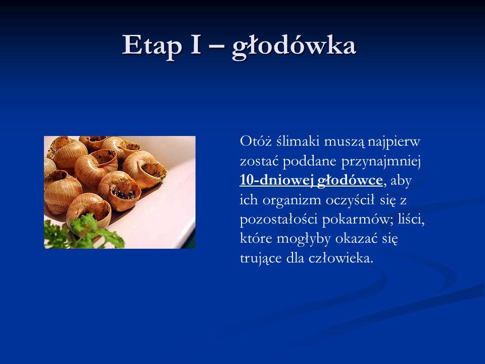 Etap I – głodówka Otóż ślimaki muszą najpierw zostać poddane przynajmniej 10-dniowej głodówce, aby ich organizm oczyścił się z pozostałości pokarmów; liści, które mogłyby okazać się trujące dla człowieka.
