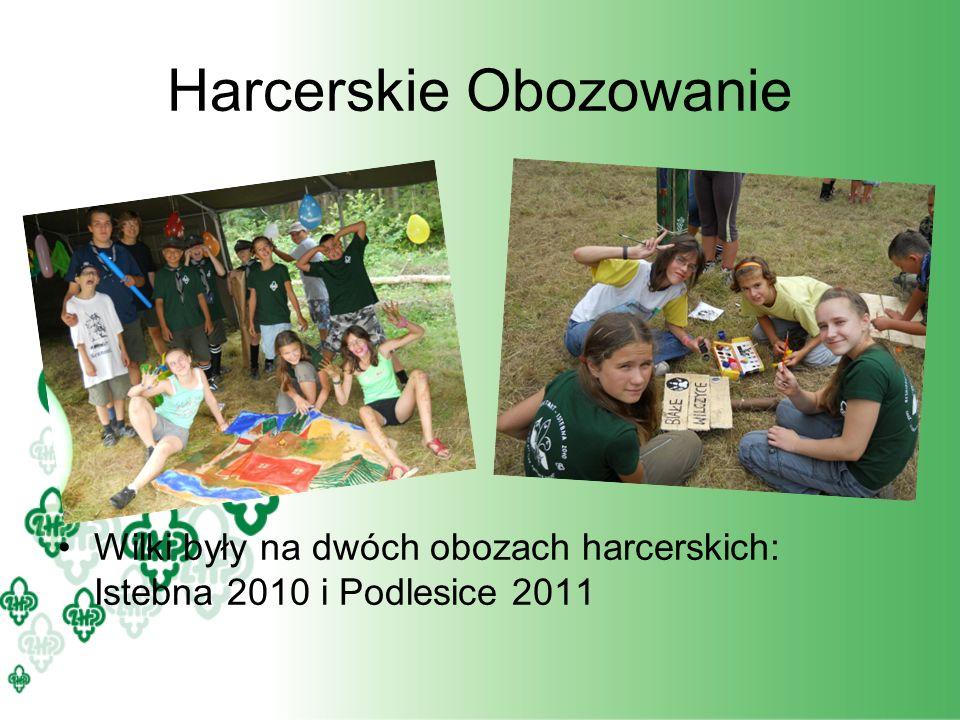 Harcerskie Obozowanie Wilki były na dwóch obozach harcerskich: Istebna 2010 i Podlesice 2011