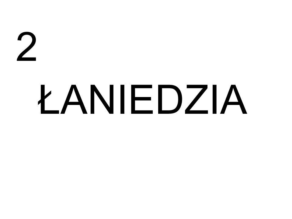 ŁANIEDZIA 2