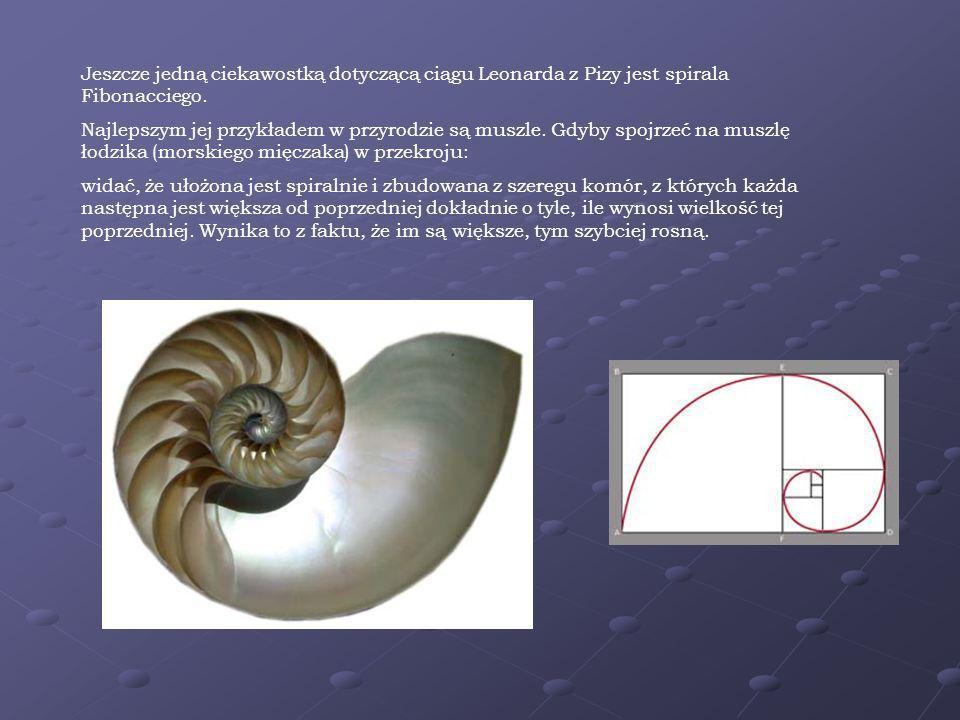 Własności ciągu Fibonacciego 1 1 2 3 5 8 13 21 34 55 89 144 1 1 2 3 5 8 13 21 34 55 89 144 Jeśli od kwadratu którejkolwiek liczby z ciągu Fibonacciego odejmiemy iloczyn liczb sąsiednich, to zawsze otrzymamy 1 lub -1.