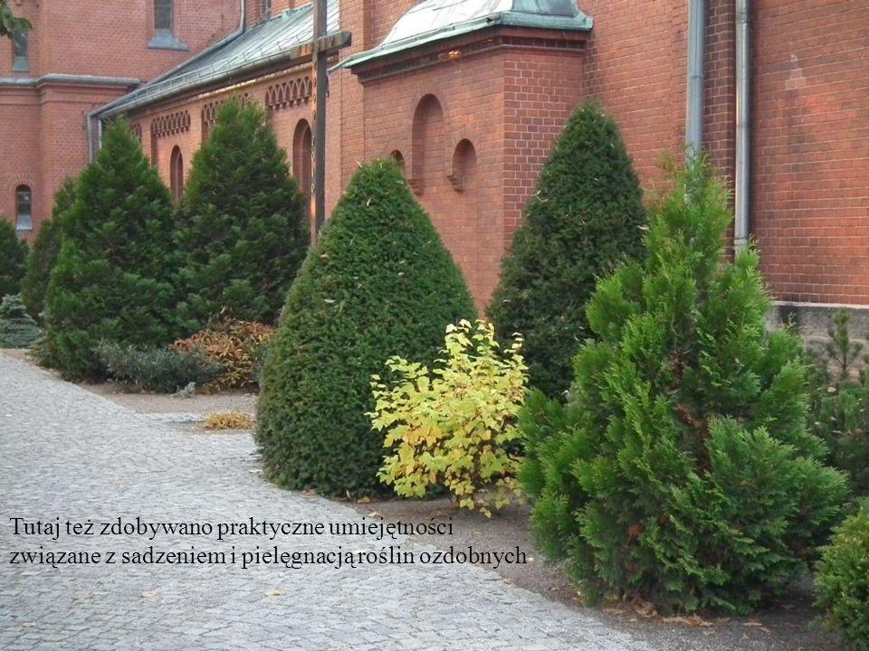 Tutaj też zdobywano praktyczne umiejętności związane z sadzeniem i pielęgnacją roślin ozdobnych