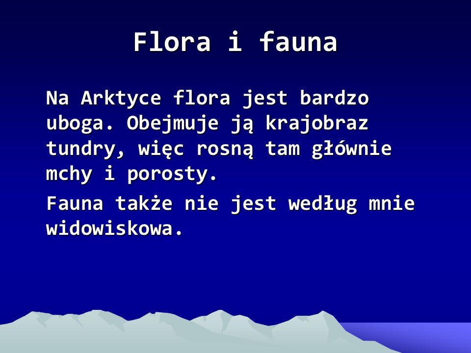 Flora i fauna Na Arktyce flora jest bardzo uboga. Obejmuje ją krajobraz tundry, więc rosną tam głównie mchy i porosty. Fauna także nie jest według mni