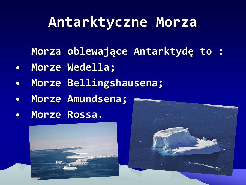 Antarktyczne Morza Morza oblewające Antarktydę to : Morze Wedella;Morze Wedella; Morze Bellingshausena;Morze Bellingshausena; Morze Amundsena;Morze Am