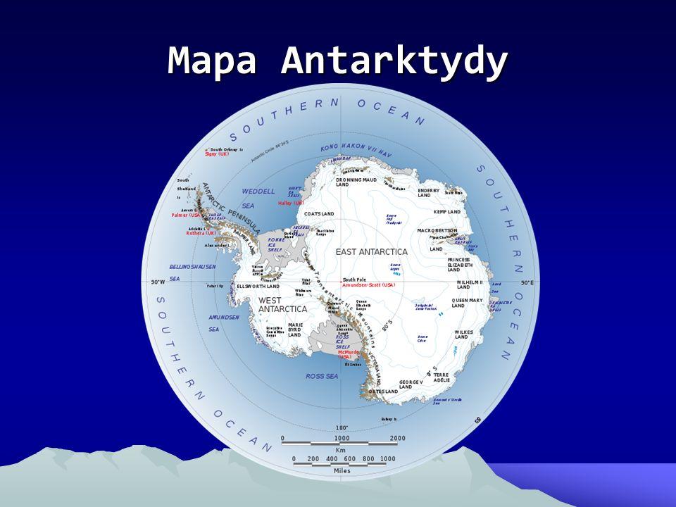 Flora Antarktydy Na Antarktydzie roślinność jest, lecz nie za dużo.