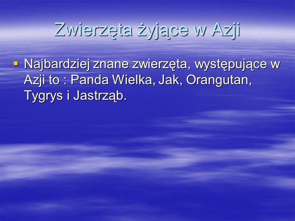 Zwierzęta żyjące w Azji Najbardziej znane zwierzęta, występujące w Azji to : Panda Wielka, Jak, Orangutan, Tygrys i Jastrząb. Najbardziej znane zwierz