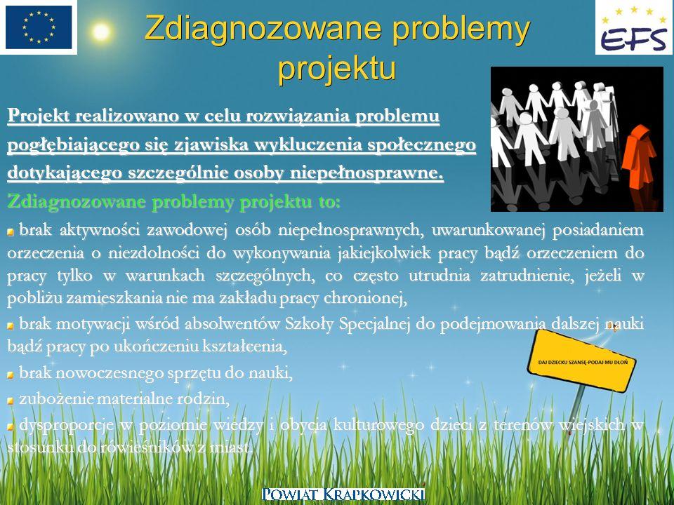 Zdiagnozowane problemy projektu Projekt realizowano w celu rozwiązania problemu pogłębiającego się zjawiska wykluczenia społecznego dotykającego szcze
