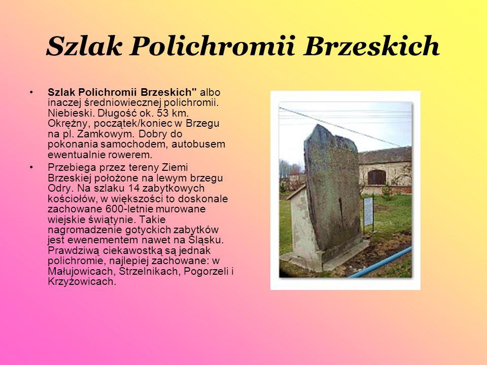 Ciekawostki Polichromii Brzeskich Sam szlak bez wątpienia na leży do pereł krajoznawczych, nie tylko naszego regionu, ale i kraju.