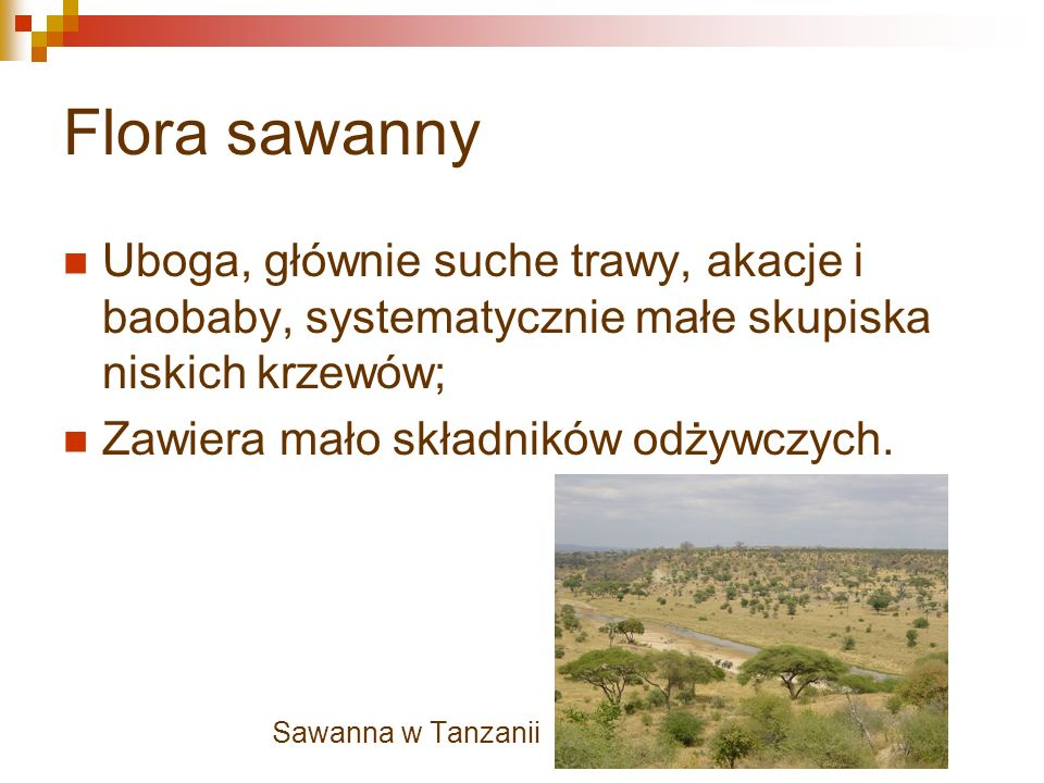 Flora sawanny Uboga, głównie suche trawy, akacje i baobaby, systematycznie małe skupiska niskich krzewów; Zawiera mało składników odżywczych.