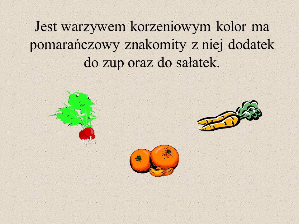 Jest warzywem korzeniowym kolor ma pomarańczowy znakomity z niej dodatek do zup oraz do sałatek.