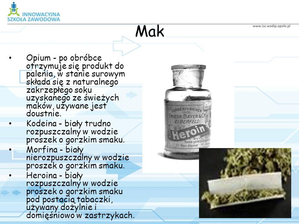 Rodzaje narkotyków Mak: -Opium -Kodeina -Morfina -Heroina Konopie: -Marihuana -Haszysz Liście Coci: -Cocaina -Crack -Liście coca Syntetyki: -Amfetamina -Ice -Ekstazy Halucynogeny: -Kaktus peyotl -Grzyby halucynogenne -LSD Barbiturany Środki wziewne Alkohol Nikotyna