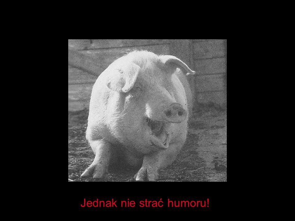 Jednak nie strać humoru!