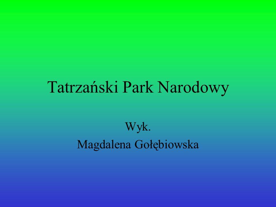 Tatrzański Park Narodowy Wyk. Magdalena Gołębiowska