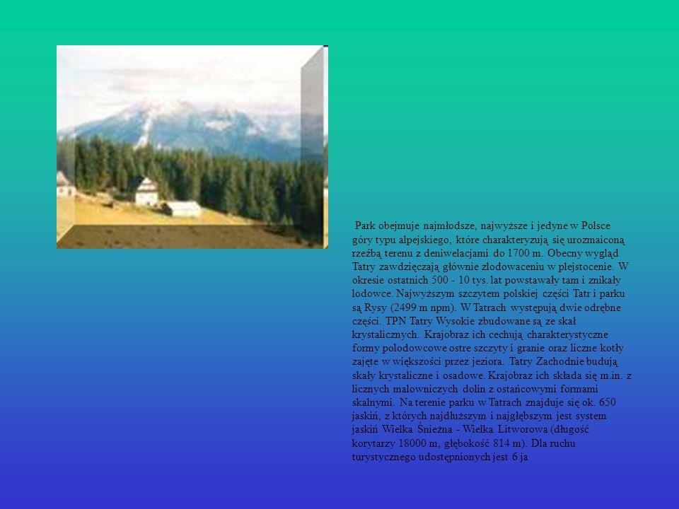 Park obejmuje najmłodsze, najwyższe i jedyne w Polsce góry typu alpejskiego, które charakteryzują się urozmaiconą rzeźbą terenu z deniwelacjami do 170