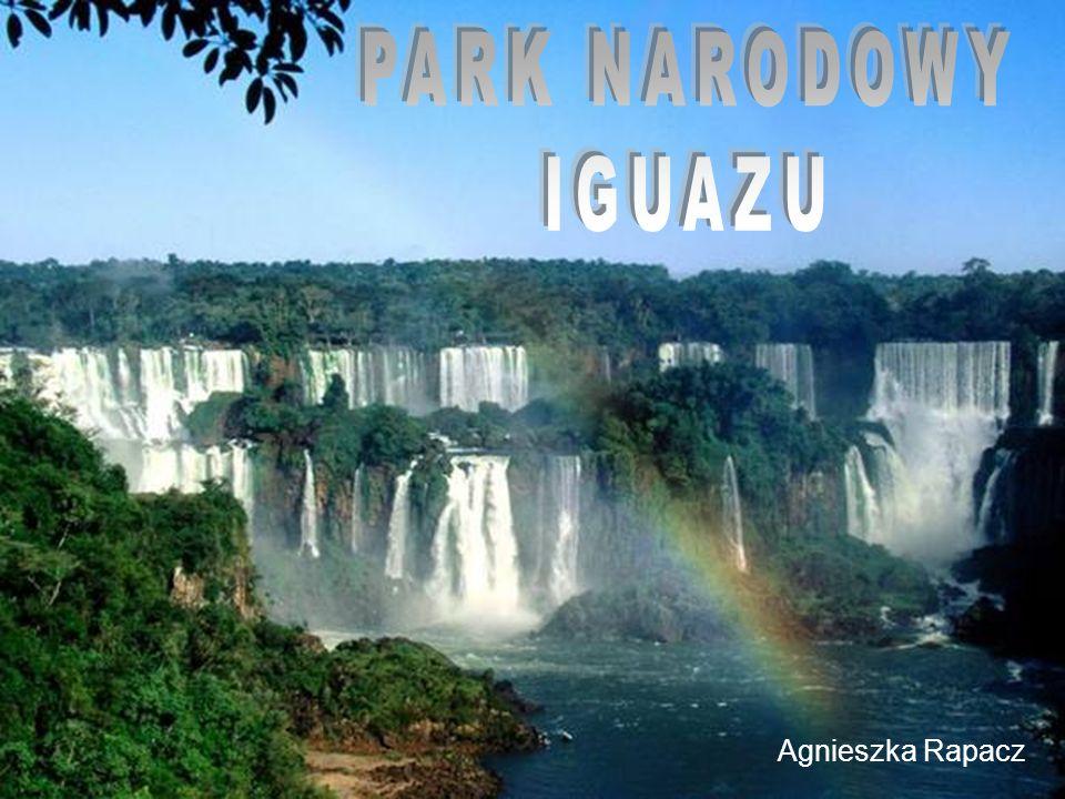Park Narodowy w Argentynie, położony na południowym brzegu rzeki Iguacu.