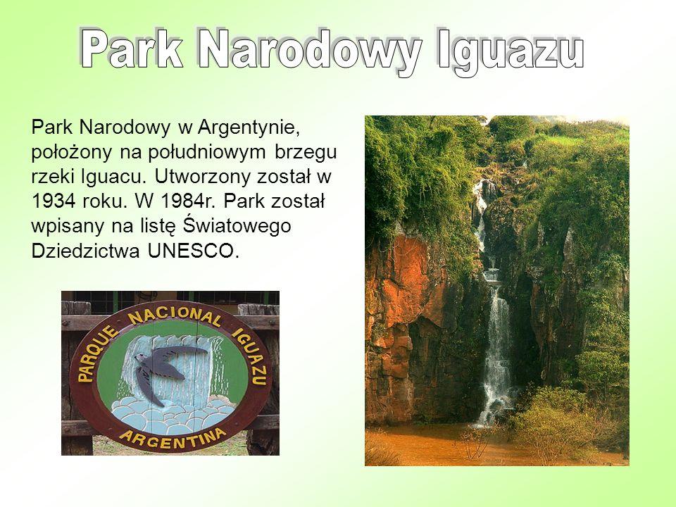 Park Narodowy Iguazu sąsiaduje z brazylijskim Parkiem Narodowym Iguacu obejmujący leżący w Brazylii północny brzeg rzeki.