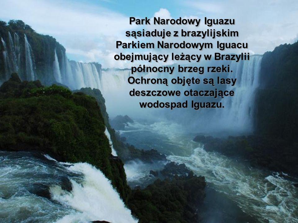 Park Narodowy Iguazu sąsiaduje z brazylijskim Parkiem Narodowym Iguacu obejmujący leżący w Brazylii północny brzeg rzeki. Ochroną objęte są lasy deszc